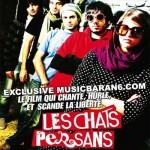 ペルシアン・インディーズは本当の反抗音楽だった / 「ペルシャ猫を誰も知らない」 バフマン・ゴバディ